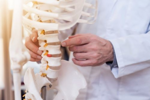 What Do The Top Chiropractors In Denver Have In Common?